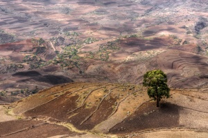 Ethiopia Landscape by Mariusz Kluzniak on Flickr