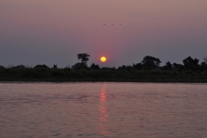 Sunset over Chobe River by abi.battachan