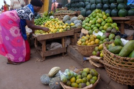 Kampala fruit seller