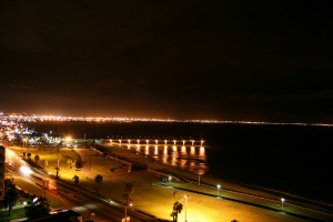 Port Elizabeth night by your local connection