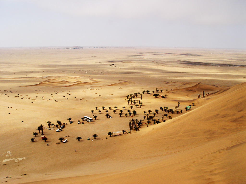 the namib desert Book your tickets online for namib desert, namibia: see 174 reviews, articles, and 274 photos of namib desert, ranked no4 on tripadvisor among 178 attractions in namibia.
