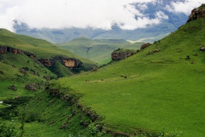 uKhahlamba Drakensberg by Caitlin