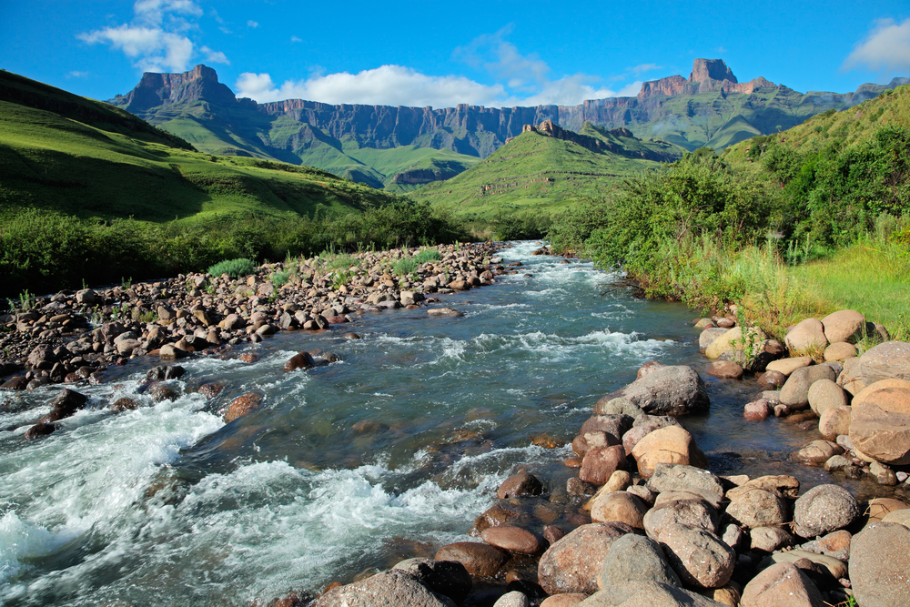 travel safari south africa budget holiday guide