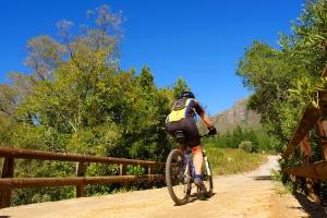 Mountain biker on the Jonkershoek mtb trails, near Stellenbosch