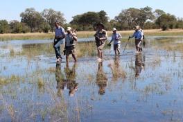 Okavango Delta walking tours