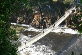 Bridge in Tsitsikamma